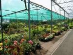 tuincentrum01