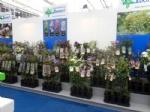 Plantarium 2016 5
