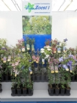 Plantarium 2016 7