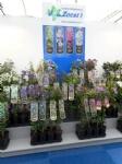 Plantarium 2016 8