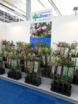 Plantarium 2016 9