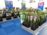 Plantarium 2016 18