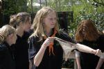 De Schouw Jorisdag 2009 (115).JPG