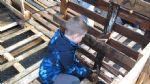 De Schouw Huttenbouw 2012 (10)