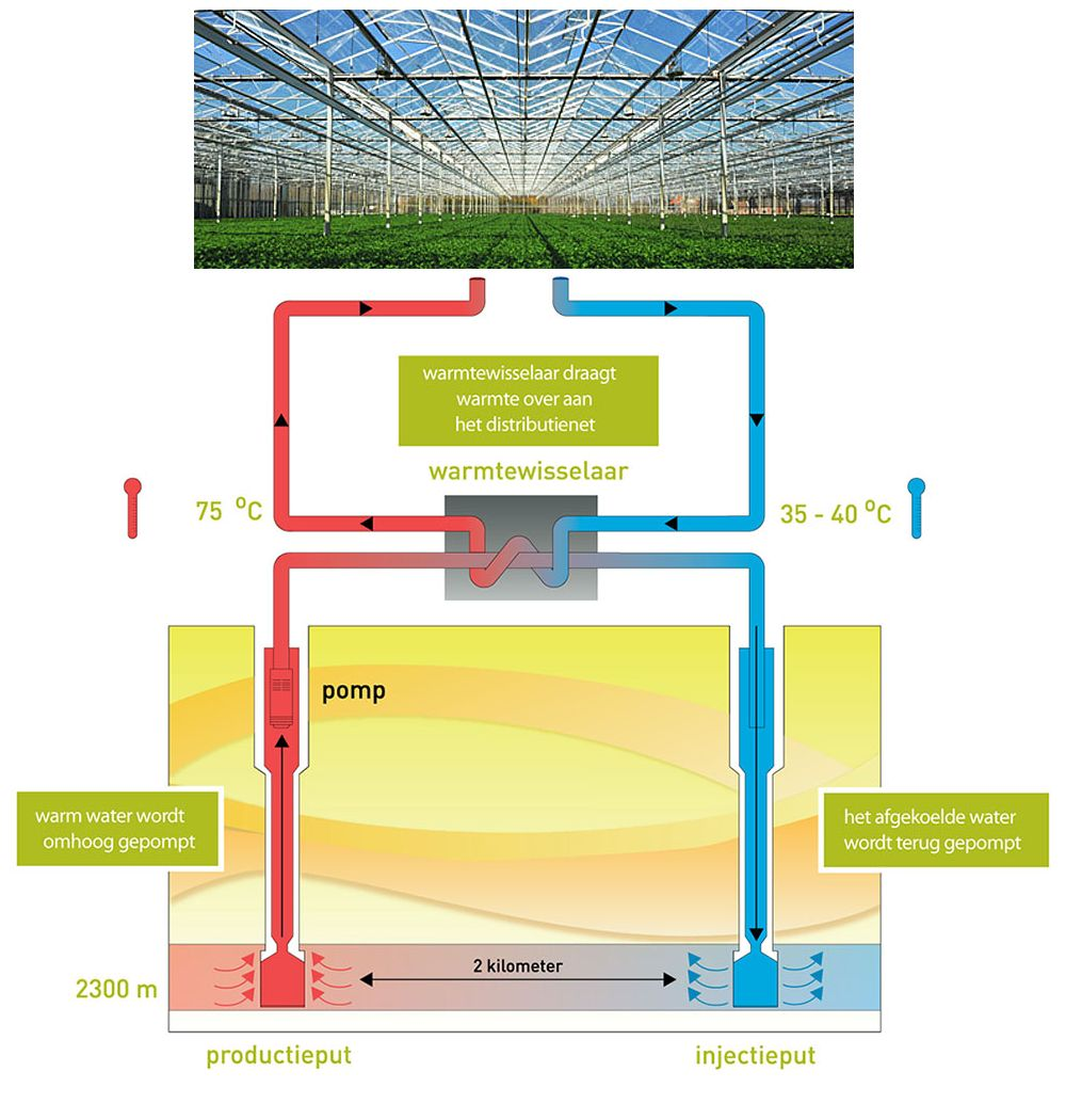 Why using geothermal heat in greenhouses pooptronica