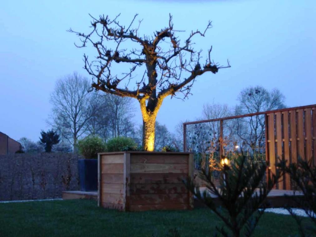 Oude perenboom uitgelicht jpg for Spiegelvijver bak