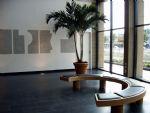 Palmboom in de hal.JPG