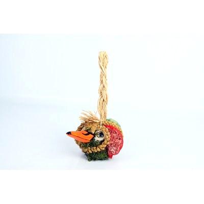 Bird-Food-Guus-Foodball