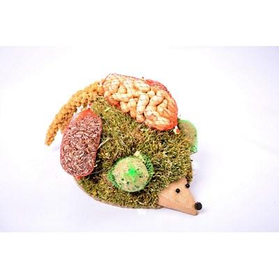 Bird-Food-Hedgehog