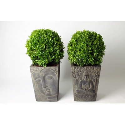 Buxus-Ball-in-Buddha-Pot