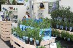 Plantarium 2010