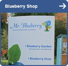 Mr. Blueberry shop